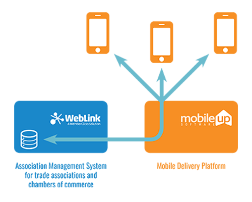 The MobileUp Mobile Delivery Platform accesses data from a WebLink database via an API-level connection.
